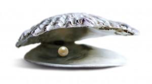 Perle i Østers